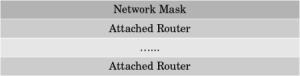 network-lsa