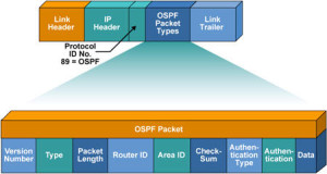 ospf_packet