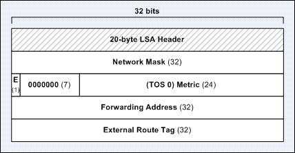 type-5 lsa format
