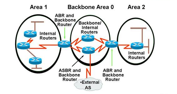 types of ospf routers